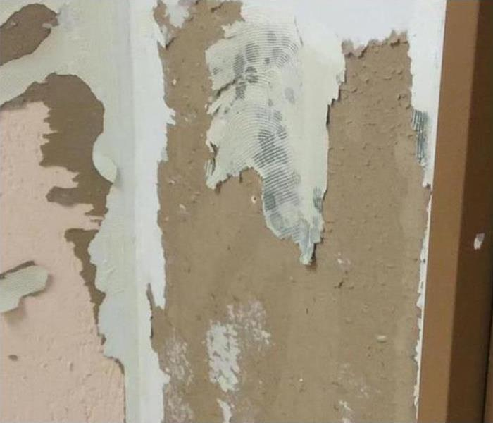 Mold Damage In Cypress