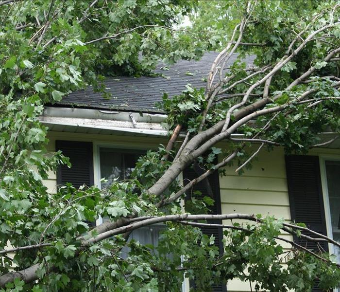 Storm Damage Tree Maintenance Can Prevent Flooding In Your Cypress Home