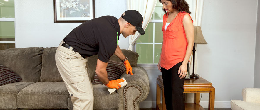 Seal Beach, CA carpet upholstery cleaning