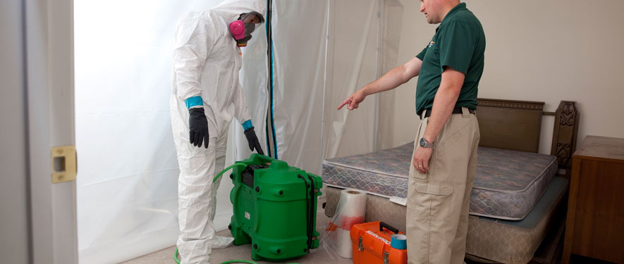 Seal Beach, CA mold removal process